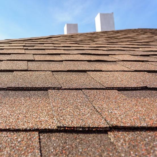 roof shingled