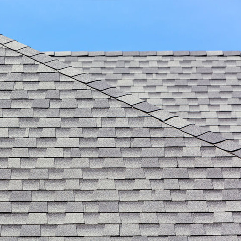 shingle roof without any damage