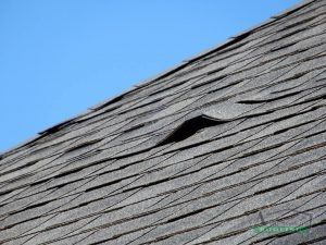 Elevated Shingles
